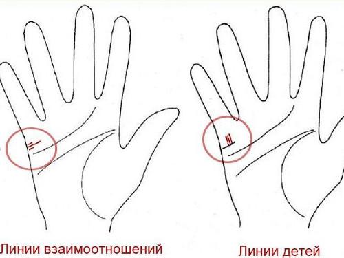 На вашей руке указаны