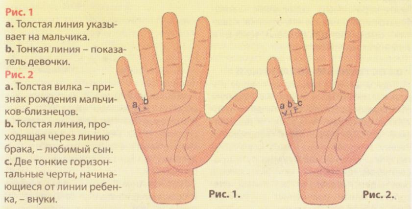Как понять линии на своей руке