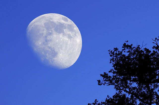 Как привлечь деньги, любовь и удачу на растущую Луну с 8 по 22 ноября 2018 года: заговоры, которые работают