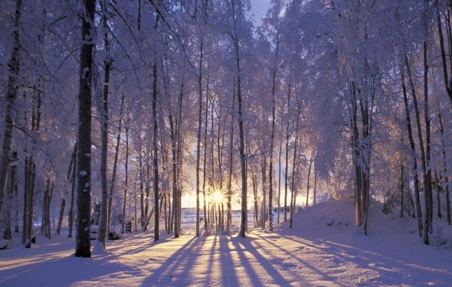 День святой Екатерины отмечают 7 декабря