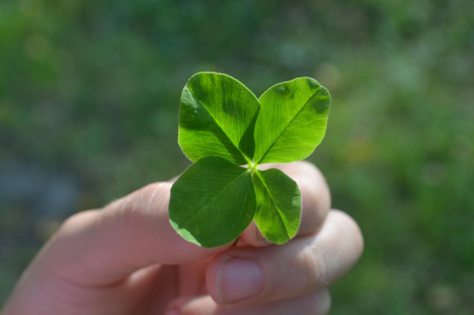 Как привлечь удачу и деньги в начале месяца: ритуалы на 1 апреля 2019 года
