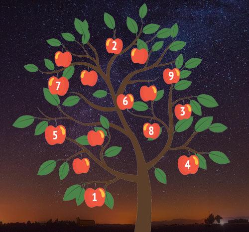 Гадание «Дерево желаний»: что ждет вас вближайшее время