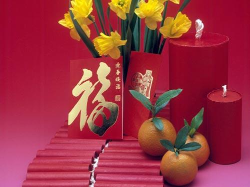 Комнатные цветы по фэн-шуй: как привлечь удачу, деньги и любовь
