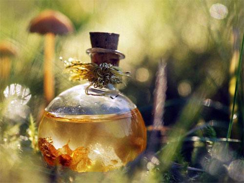 Магическая сила аромата: как зарядить свой парфюм энергией успеха