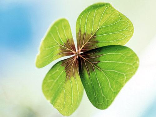 Символы удачи: как привлечь деньги, любовь и здоровье