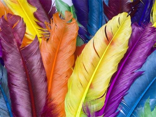 Цвет и характер человека: как любимый цвет определяет нашу личность