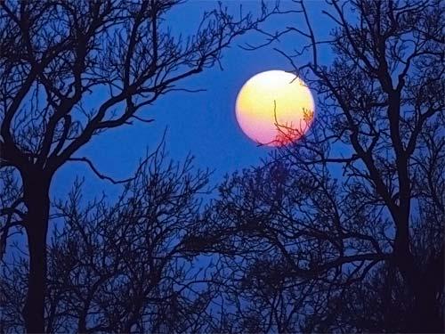Елена Ясевич: вред и польза полнолуния по лунному календарю