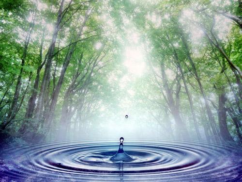 Дмитрий Волхов: как увидеть свое будущее в воде