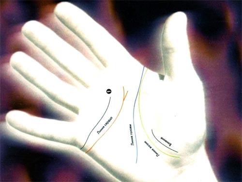 Хиромантия: как по линиям руки найти свою вторую половинку