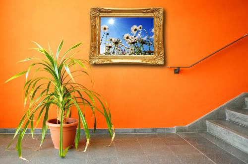 Какие картины повесить в доме по фэн-шуй