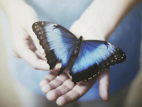 Народные приметы и суеверия на удачу