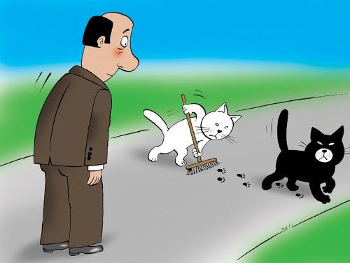 Народные приметы и суеверия на дорогу