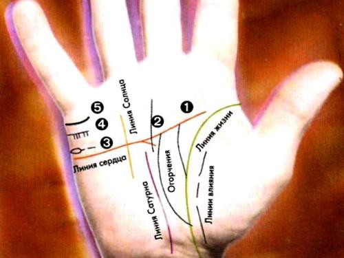 Линии на руке в хиромантии: узнаем все о личной жизни человека