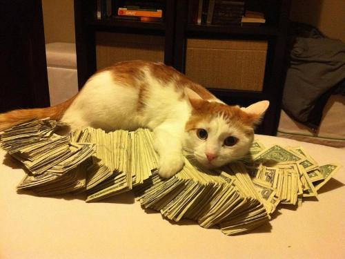 Ритуалы на деньги 13 числа