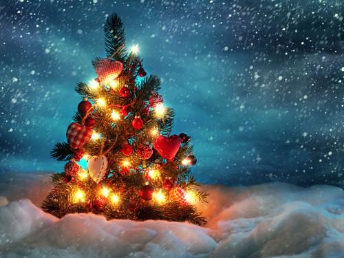 Как встретить новый 2015 год Козы: новогодние приметы на удачу