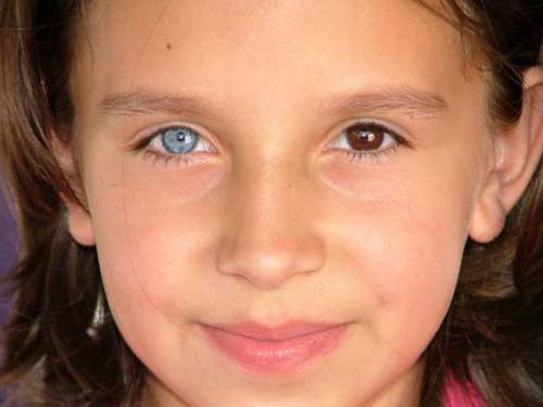 Глаза разного цвета: приметы и суеверия