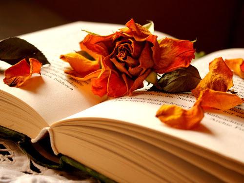 Как и зачем вести Дневник Благодарности