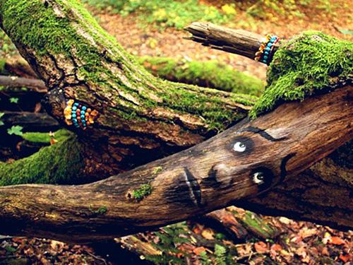 Какие деревья нельзя сажать рядом с домом