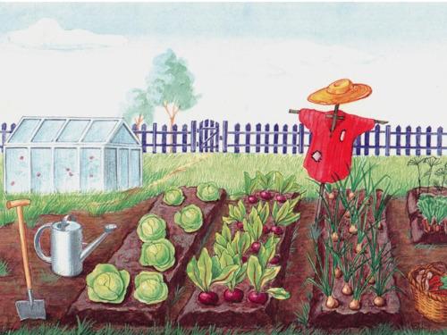 Огородная магия: выращиваем счастье и благополучие