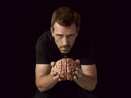 Активность мозга по часам: в какое время ваш мозг работает быстрее