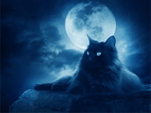 Сильные заговоры на Луну