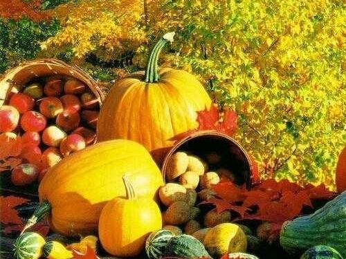 Осенины: традиции народного праздника