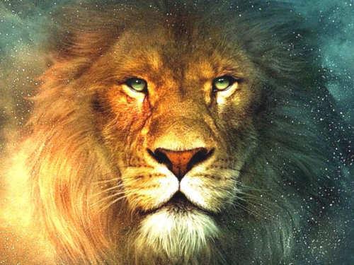 Как Знаки Зодиака добиваются успеха: знаменитые Львы