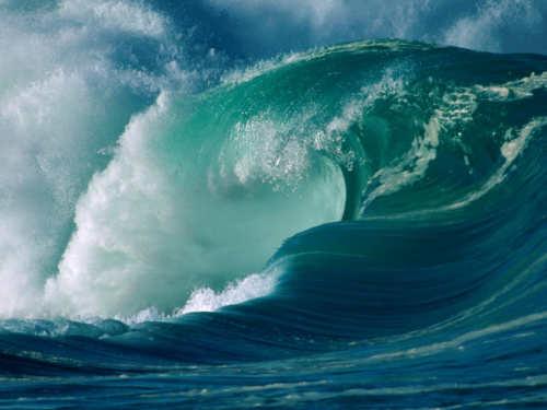 Камни водных Знаков Зодиака: талисманы Раков, Скорпионов иРыб