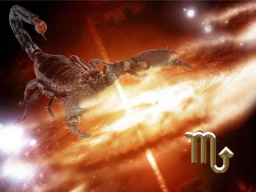 Мужчина-Скорпион: любовная совместимость по Знаку Зодиака