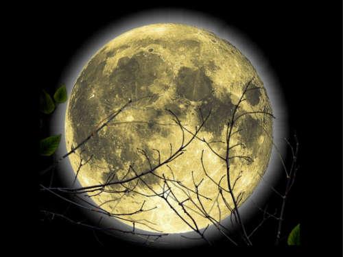 Ученые доказали: Луна влияет на состояние людей