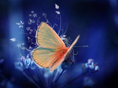 Упражнение «Бабочка»: раскрываем чакры иулучшаем энергетику