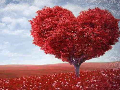Три техники привлечения любви