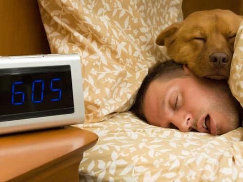 Энергетический подъем: 10советов, чтобы чувствовать себя бодро ссамого утра