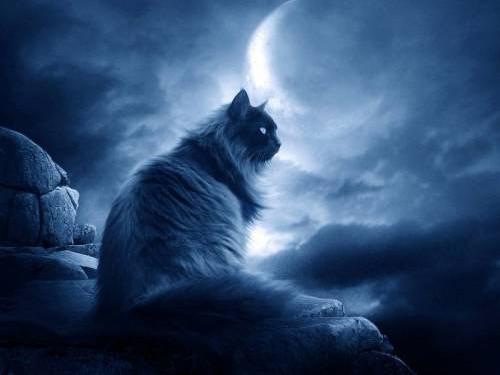 Убывающая Луна: что можно ичто нельзя делать