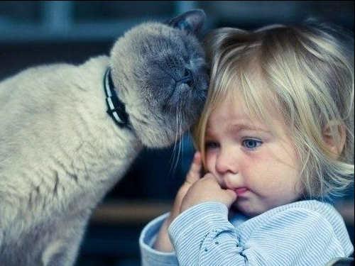 Способ ясновидения: как эмпатия помогает чувствовать людей