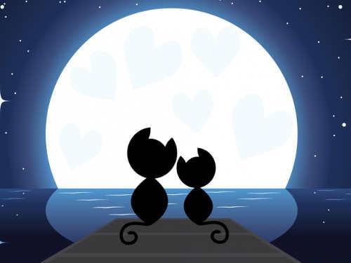 Лунный календарь на неделю с 20 по 26 февраля