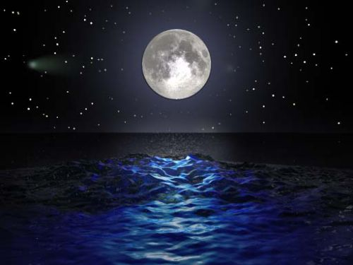 Лунный календарь на неделю с 20 по 26 марта