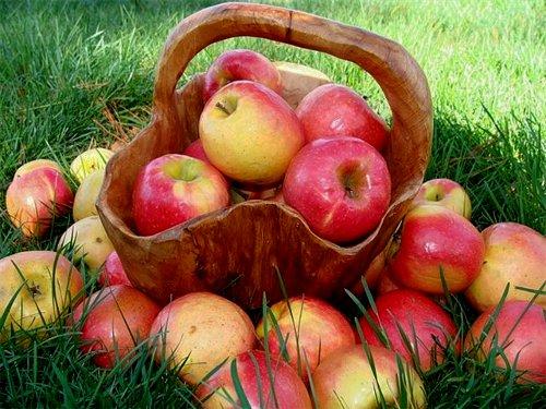 Яблочный Спас: обряды наудачу, любовь иблагополучие