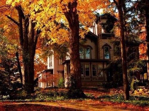 Лучшие ритуалы осени: очищаем дом отнегатива ипривлекаем благополучие