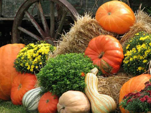 Осенины: история, смысл итрадиции праздника