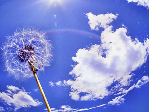 Весенние обряды наблагополучие, процветание иуспех