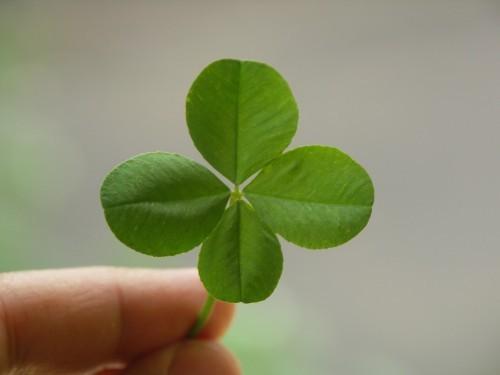 Как быстро привлечь удачу: эффективные шепотки, заговоры иобряды