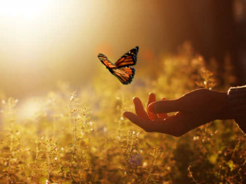 7вещей, откоторых нужно отказаться, чтобы стать счастливее