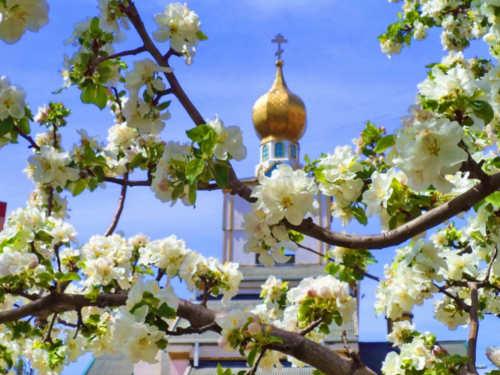 Вознесение Господне: обряды изаговоры наденьги, счастье илюбовь