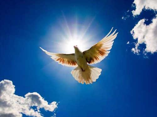Молитвы Святому Духу наисполнение желания