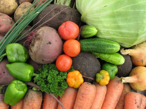 Заговоры нахороший ибогатый урожай