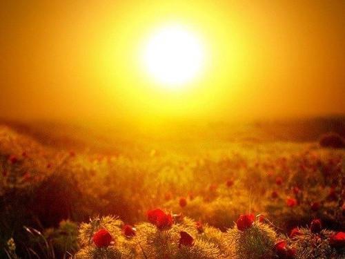 День летнего солнцестояния виюне 2018 года
