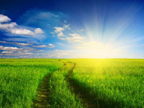 Завтра самый длинный день вгоду: летнее солнцестояние 21июня