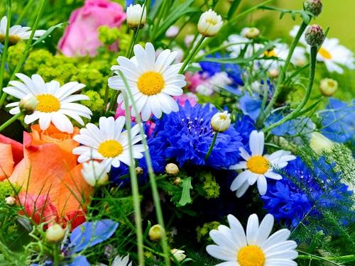 Как определить свой цветок-оберег подате рождения