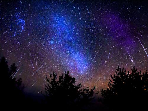 Звездопад вночь с12на 13августа: как исполнить желание поЗнаку Зодиака